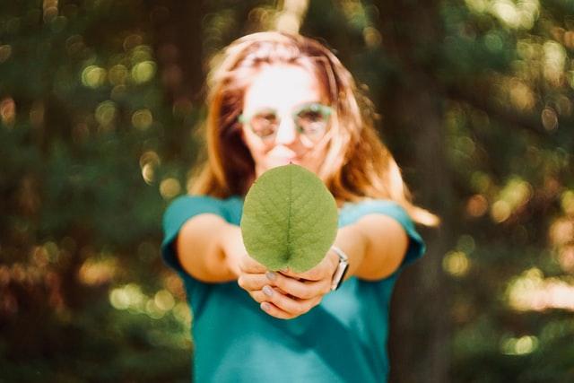 Alles wat je moet weten over groene energie